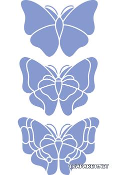 Большие бабочки 3