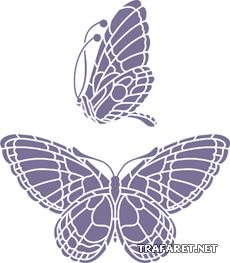 Бабочка и профиль