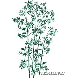 Большой бамбук