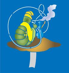 Гусеница и кальян (трафарет для рисования)