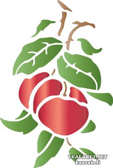 Два яблока на ветке (трафарет для росписи)