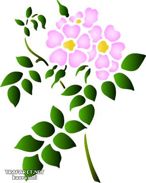 Полевые цветы 68 (трафарет для стен)