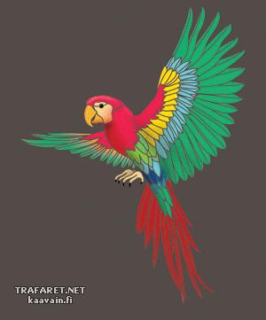 Летящий попугай (трафарет для росписи)