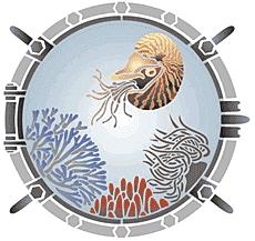 Моллюск в иллюминаторе (трафарет для рисования)
