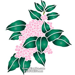 Розовая ветка гортензии