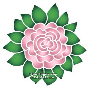 Роза в листьях 1
