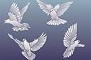 Четыре голубя