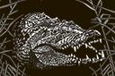 Милый крокодильчик