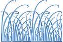 Трын-трава (трафарет, малая картинка)