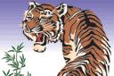 Японский тигр (трафарет, малая картинка)