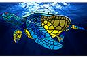 Трафарет Большая морская черепаха