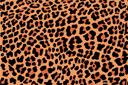 Пятна леопарда (трафарет, малая картинка)