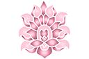 Цветущий лотос А
