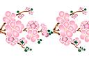 Цветущая ветка сакуры А