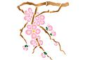 Ветка вишни весной А