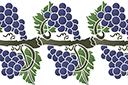 Виноградная лоза 4