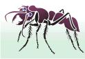 Большой муравей. Упак.  4 шт.