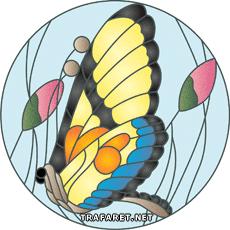 Бабочка в профиль