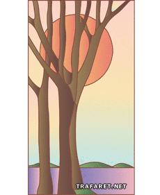 Деревья на закате