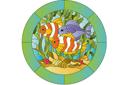 Рыбки тропиков